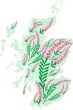 Vektorbildöversikten av Skottland med ljung blommar Royaltyfri Bild