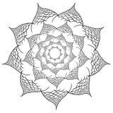 Vektorblommamandala bakgrundsdesignelement fyra vita snowflakes vektor illustrationer