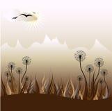 Vektorblumenhintergrund Stockbild
