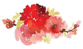 Vektorblumenillustration für Grußkarten Stockfoto