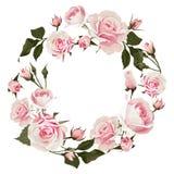 Vektorblumenkranz mit Rosen Geblühter Rahmen mit rosa Blumen für Hochzeitstag oder St.-Valentinsgrußtag stockbilder