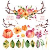 Vektorblumensatz Bunte purpurrote Blumensammlung mit Blättern, Hörnern und Blumen, zeichnender watercolor+colorful-Blumenstrauß m Stockfotografie