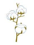 Vektorbomullsfrunch stock illustrationer