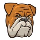 Vektorbulldogg Royaltyfria Bilder