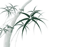 Vektorchinesischer Bambusmalereihintergrund Stockbild