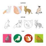 Vektordesign av husdjur- och sphynxlogoen Samlingen av husdjuret och gyckel lagerf?r vektorillustrationen royaltyfri illustrationer