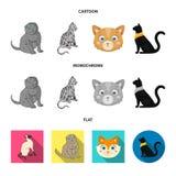 Vektordesign av husdjur- och sphynxsymbolen Samling av husdjuret och rolig vektorsymbol f?r materiel royaltyfri illustrationer