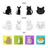 Vektordesign av husdjur- och sphynxsymbolen Samling av husdjuret och rolig vektorsymbol f?r materiel stock illustrationer
