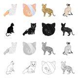 Vektordesign av husdjur- och sphynxsymbolen St?ll in av husdjur och illustration f?r gyckelmaterielvektor stock illustrationer