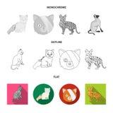Vektordesign av husdjur- och sphynxsymbolet Samlingen av husdjuret och gyckel lagerf?r symbolet f?r reng?ringsduk stock illustrationer