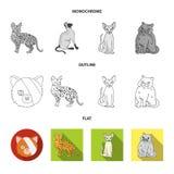 Vektordesign av husdjur- och sphynxtecknet Samling av husdjuret och rolig vektorsymbol f?r materiel vektor illustrationer
