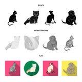 Vektordesign av husdjur- och sphynxtecknet Samlingen av husdjuret och gyckel lagerf?r vektorillustrationen vektor illustrationer