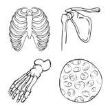 Vektordesign av medicin- och kliniklogoen St?ll in av medicin- och l?karunders?kningmaterielsymbolet f?r reng?ringsduk royaltyfri illustrationer