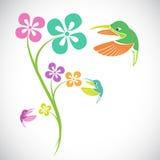 Vektordesign des Kolibris und der Blumen Stockbild