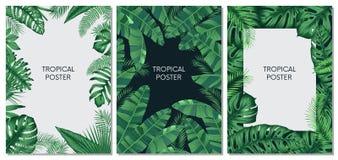 Vektordesignkort och baner med exotiska sidor, tropisk tryckbar uppsättning stock illustrationer