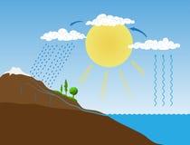 Vektordiagram av vattencirkuleringen i natur stock illustrationer