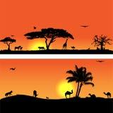 Vektorfahnen mit afrikanischer Fauna und Flora Lizenzfreies Stockfoto