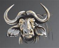 Skizze des Gesichtes eines afrikanischen Büffels Stockfotos