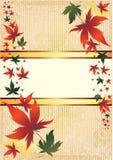 Vektorfeld mit Herbst-Blättern. Danksagung Stockfoto