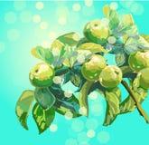 Vektorfilial med sidor och äpplen Arkivbild