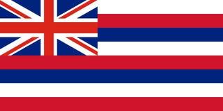 Vektorflagga av den Hawaii staten Amerika tillstånd förenade stock illustrationer