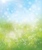 Vektorfrühlings-Naturhintergrund Stockbilder