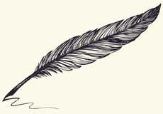 Vektorfrihandsteckning av den mörka fågelfjädern Royaltyfri Bild