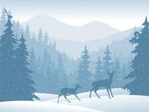 Vektorgebirgswald mit Rogenrotwild Lizenzfreie Stockbilder