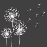 Vektorgestaltungselemente in der strengen Blumenart Lizenzfreies Stockbild