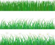 Vektorgräs och blomma Arkivbilder