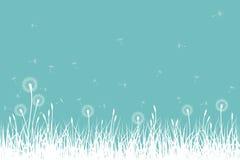 Vektorgräs och maskrosor Arkivfoto