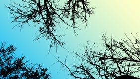 Vektorgräs- och trädlandskapkontur Realistiska trädfolliagekonturer i natt- och aftonhimmel utomhus- natur royaltyfri illustrationer