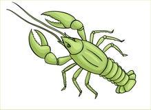 Vektorgräsplancancer stock illustrationer