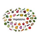 Vektorgrönsaker och ord vegetarianism Arkivfoto