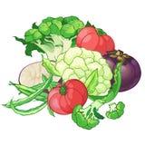 Vektorgrönsaker ställde in med broccoli, gröna radbönor stock illustrationer