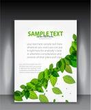 Vektorgrün lässt Broschüre Stockfotos