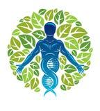 Vektorgraphikillustration des muskulösen Menschen dargestellt als DNA Lizenzfreie Stockbilder