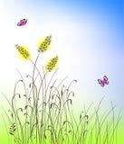 Vektorgras und Blumenschattenbildhintergrund Stockfoto
