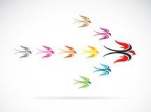 Vektorgrupp av färgrika svalafåglar Fotografering för Bildbyråer