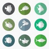 Vektorgrupp av fisken i cirkeln stock illustrationer