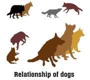 Vektorgrupp av hundkapplöpning Arkivfoton
