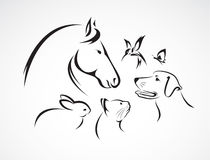 Vektorgrupp av husdjur vektor illustrationer