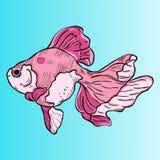 Vektorguldfisk på en blå bakgrundsgradering stock illustrationer