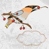 Vektorhälsningkort med den sjungande fågeln Vektor Illustrationer