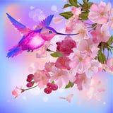 Vektorhälsningskort med blommor och surr-fågeln Arkivfoton
