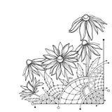 Vektorhörngrupp med översiktsRudbeckiahirtaen eller svart-synad Susan blomma, utsmyckat blad och knopp i svart som isoleras på vi stock illustrationer