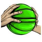 Vektorhand och basket som isoleras på vit royaltyfri illustrationer