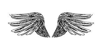 Vektorhandgezogene Illustration von Flügeln auf weißem Hintergrund stock abbildung