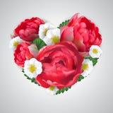 Vektorherz von den rosafarbenen Blumen der realistischen roten Pfingstrose lizenzfreie abbildung