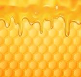 Vektorhintergrund mit Bienenwaben und Honig Stockbilder